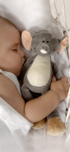 Knuffel Olifant Teddykompaniet